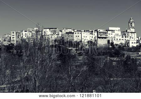 La Senia skyline typical Catalan town. Province of Tarragona. Spain. Black and white image