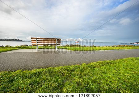 landscape of country road through grassland in morning in seattle