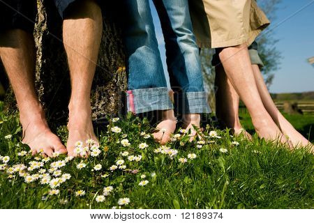 Healthy feet series: feet of men and women of different ages in the grass with daisies, focus on feet in front