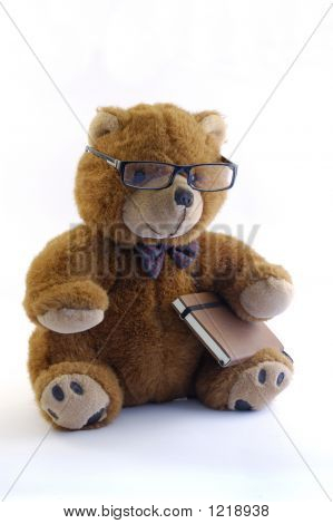 Cult Teddy Bear