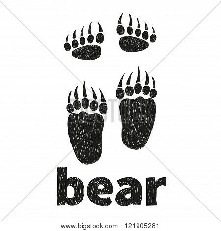 Bear paws, front and hind. Doodle vector illustration of bears footprints.