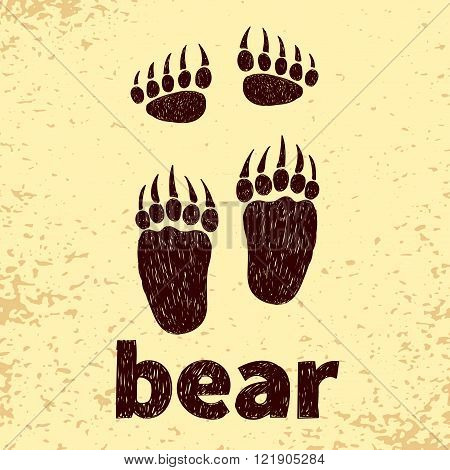 Bear footprints, front and hind paws. Doodle vector illustration.