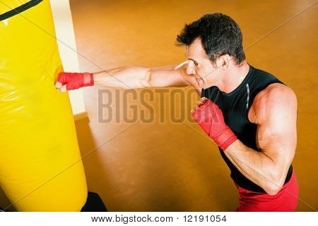 Kickboxer punching the sandbag