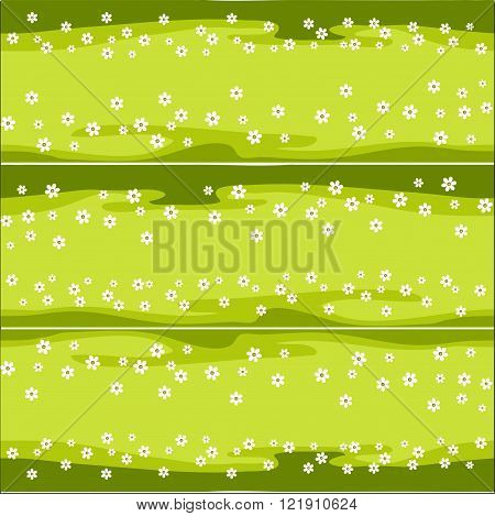horizontal pattern lawn with daisies