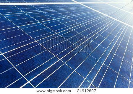 Solar energy panel texture
