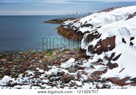 Beach with large round stones on the coast of the Barents Sea Arctic