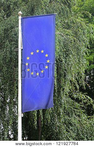 European Union flag on pole next to green tree
