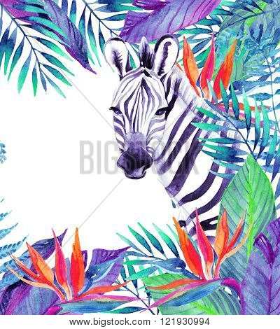 Zebra and exotic flowers. Watercolor jungle card. Hand painted illustration with zebra on white background for your design.