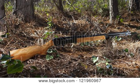 Semi automatic rimfire rifle in the forst with trees