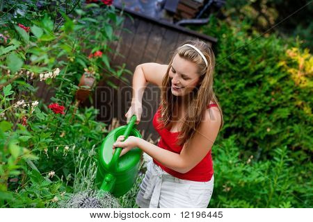 Woman gardener watering the flowers in her garden in summer