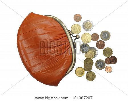 Women's purse eel skin and money on a white background