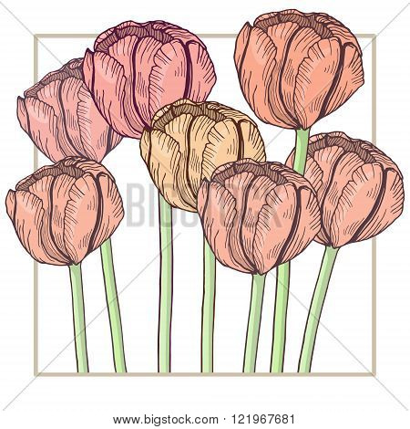 Handdrawn tulip card. Pastel tender colors, delicate frame. Vector illustration