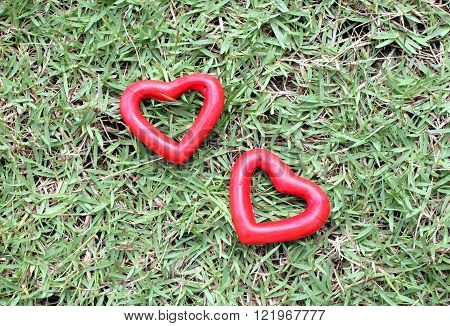 two red heart on the grass valentine concept