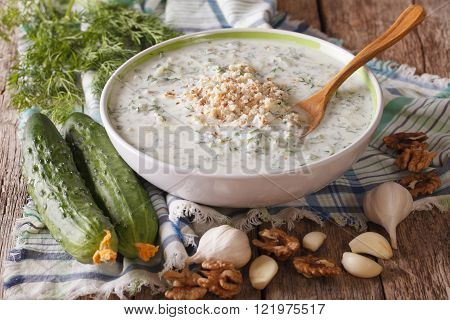 Bulgarian Soup Tarator Close Up In A Bowl And Ingredients. Horizontal