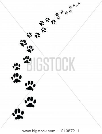Black footprints of cat, turn left, vector illustration