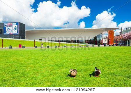 AMSTERDAM-APRIL 30: Couple of ducks on the Museum Square with Stedelijk Museum in the background on April 302015. Museum Square is surrounded by the most important museums in Amsterdam.