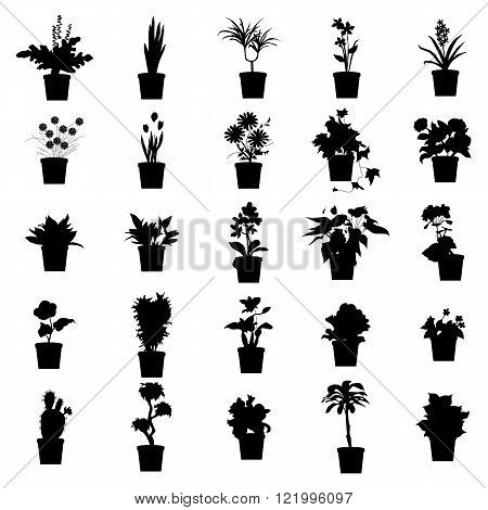 Potted plants silhouettes set. Potted plants silhouettes art. Potted plants silhouettes web. Potted plants silhouettes new. Potted plants silhouettes www. Potted plants silhouettes app. Potted plants silhouettes best