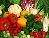 stock photo of fruits vegetables  - Field  - JPG