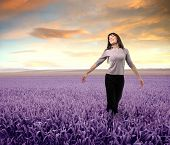 image of lavender field  - Woman standing with open arms on a lavender field - JPG