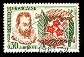vintage french stamp depicting Jean Nicot who introduced Tobacco to France, and gave his name to Nic