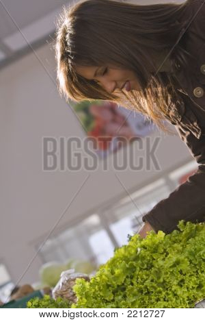 Vegetable Market-Green Lettuce