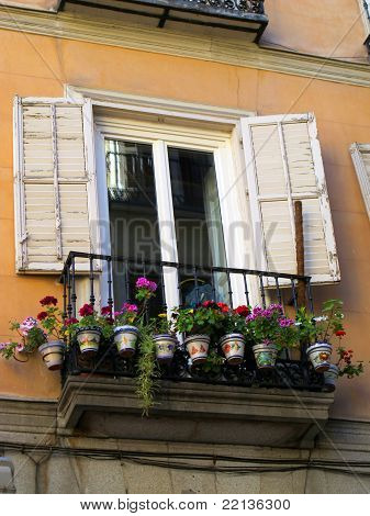 Old Window With Pots
