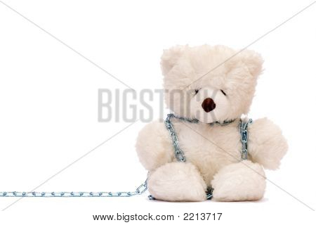 Chained Bear