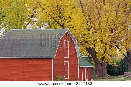Finca con colores de otoño