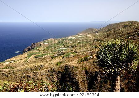 Beautiful Coast Of La Palma