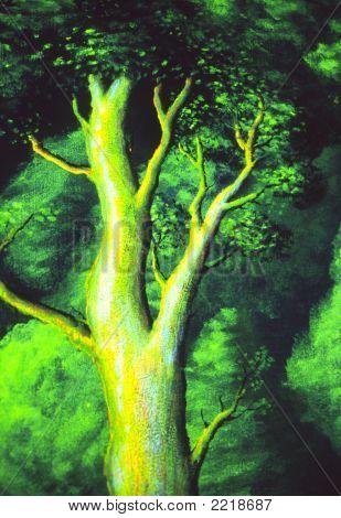 Magical Oak Tree