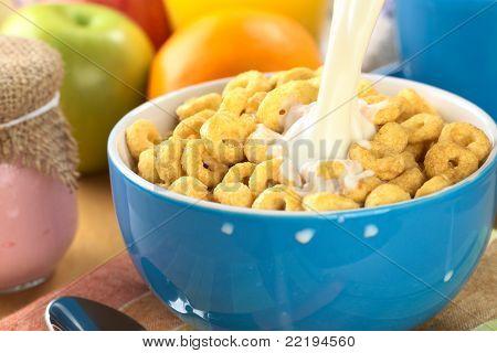 Honig gewürzt Müsli mit Milch