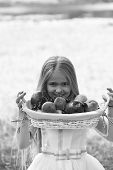 Small Girl In Dress With Fruit Basket poster