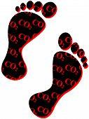 image of carbon-footprint  - Carbon footprint - JPG