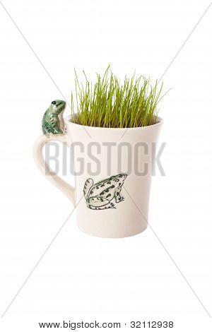 Frog, mug and grass