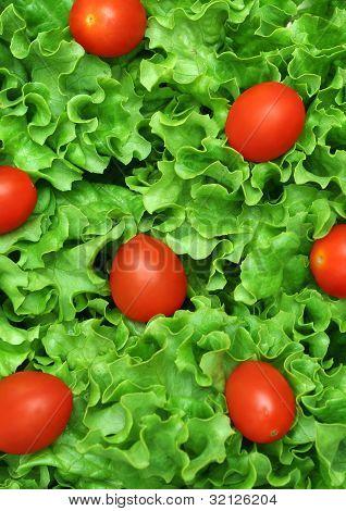 Closeup Of A Salad