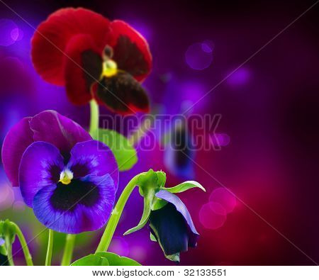 Spring Flowers Pansy over Black art border design