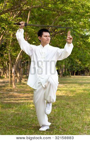 chinesisches Kung Fu mit Schwert-Hochformat-position
