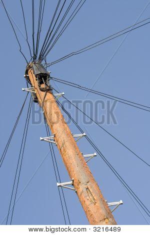 Phone Pole