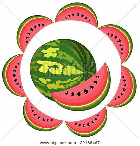 Water-melon Segment