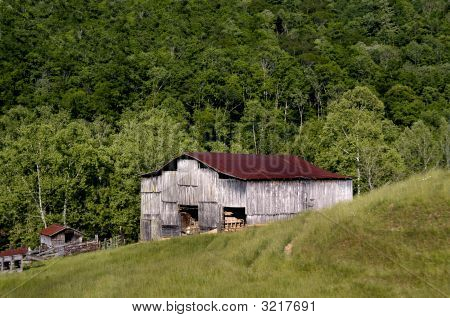 Backwoods Farmland