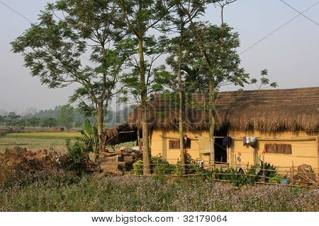 Farmer House And Fields In Chitwan