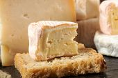 French Saint Albray Cheese And A Slice Of French Bread poster