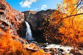 Kurkure Waterfall With Yellow Autumn Trees In Altai Mountains, Siberia, Russia. Beautiful Autumn Lan poster