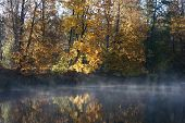 Sunrise In The October Autumn Morning. The River In A Gaze, Colourful Trees On The Distant Coast And poster