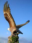 stock photo of langkawi  - Big eagle statue - JPG