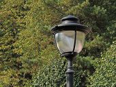 Street Lights On Poles.decorative Street Lighting.street Lights On Poles.decorative Street Lighting. poster
