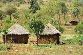 Landscape of rural zululand poster