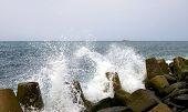 stock photo of sakhalin  - Pacific ocean Tatar strait island Sakhalin.   Seashore. - JPG