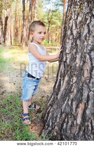 Beautiful boy stands near a tree in the forest