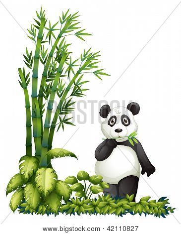 Illsutration of a panda eating on a white background